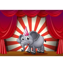 An elephant wearing a party hat at the stage vector