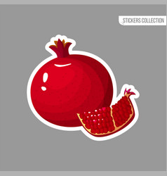 cartoon fresh pomegranate isolated sticker vector image