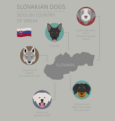 Dogs by country irish 3 vector