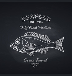 ocean perch hand drawn vector image