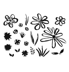 Set of hand drawn ink flowers and grass vector