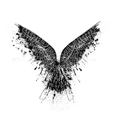 Black grunge runic raven vector