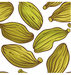 cardamom seeds pattern on white background vector image