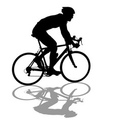 silhouette of a cyclist male on white background vector image