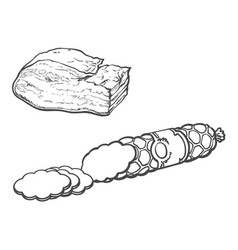 Sketch salami sausage and lard isolated vector