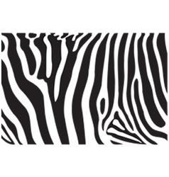Zebra texture vector
