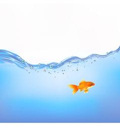 Goldfish in water vector
