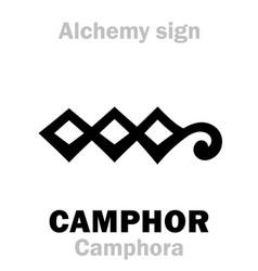 Alchemy camphor camphora vector