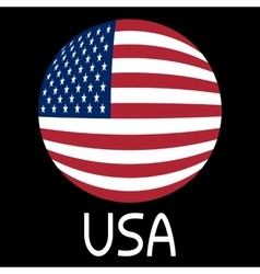 American flag in globe form and word USA vector image