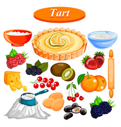 Food and spice ingredient for fruit tart vector