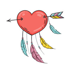 heart with feathers pierced with an arrow vector image