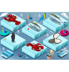 Isometric Infographic of Marine Life vector image