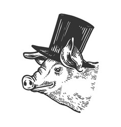Pig animal in cylinder top hat engraving vector