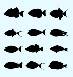 tropical fish collection silhouette vector image