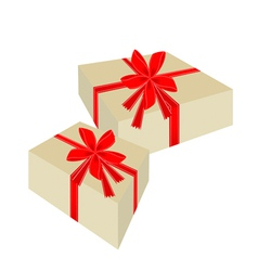 two beautiful gift boxes with red ribbon vector image
