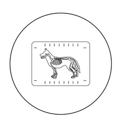 Dog x-ray icon in outline style isolated on white vector
