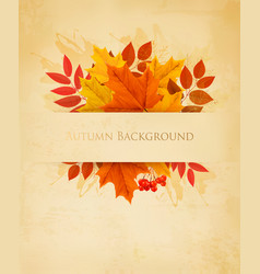 Vintage nature autumn background with colorful vector