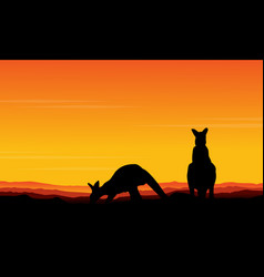 art kangaroo beauty scenery vector image