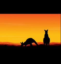 Art kangaroo beauty scenery vector