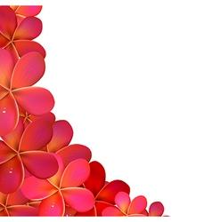 Frangipani Frame With Water Drops vector image