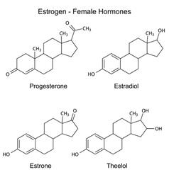 Chemical formulas of female sex hormones vector image