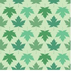 Seamless wallpaper maple leaves vector