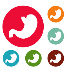 stomach icons circle set vector image