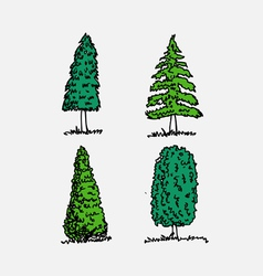 Trees with leaves in vector