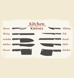 cooking knifes types vector image
