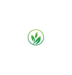 green leaf organic nature logo vector image