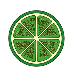 Lemon or lime fruit icon image vector