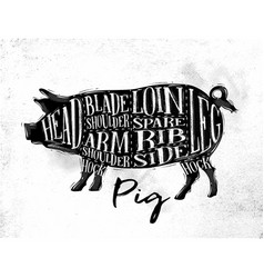 Pig pork cutting scheme vector