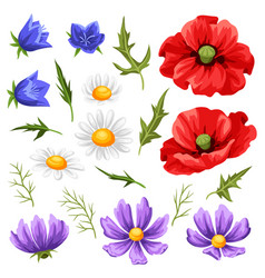 set summer flowers vector image
