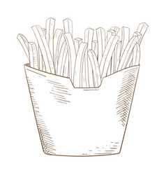 french fries sketch hand drawn sketch vector image vector image