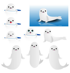 collection cute baseal vector image