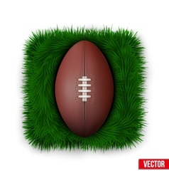 Icon Classic rugby ball on green grass vector