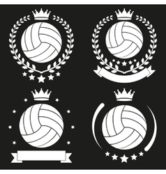 Set of Vintage Volleyball Club Badge and Label vector image