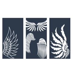 Wings hand drawn cards animal feather pinion bird vector