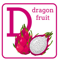 An alphabet with fruits letter d dragon fruit vector