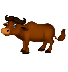 buffalo cartoon vector image