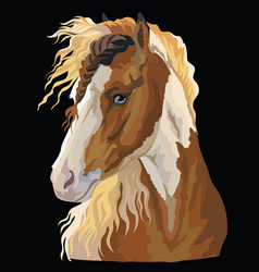 colorful horse portrait-3 vector image