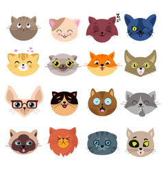 Fun cartoon cat faces cute kitten portraits vector