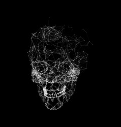 skull made in polygons plexus geometric structure vector image