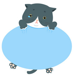 Pity blue cat hold empty board vector