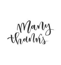 Thank you lettering greeting vector image
