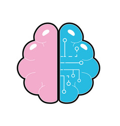 Anatomy brain with circuits digital connection vector