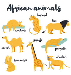 big set african animals on white background vector image