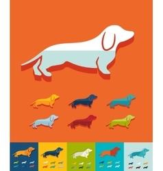 Flat design german badger-dog vector