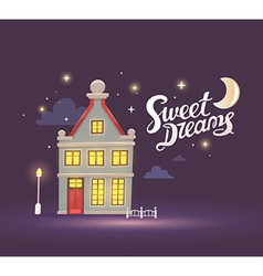 night house with street lamp and fence on vector image