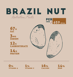 nutrition fact of brazil nut vector image